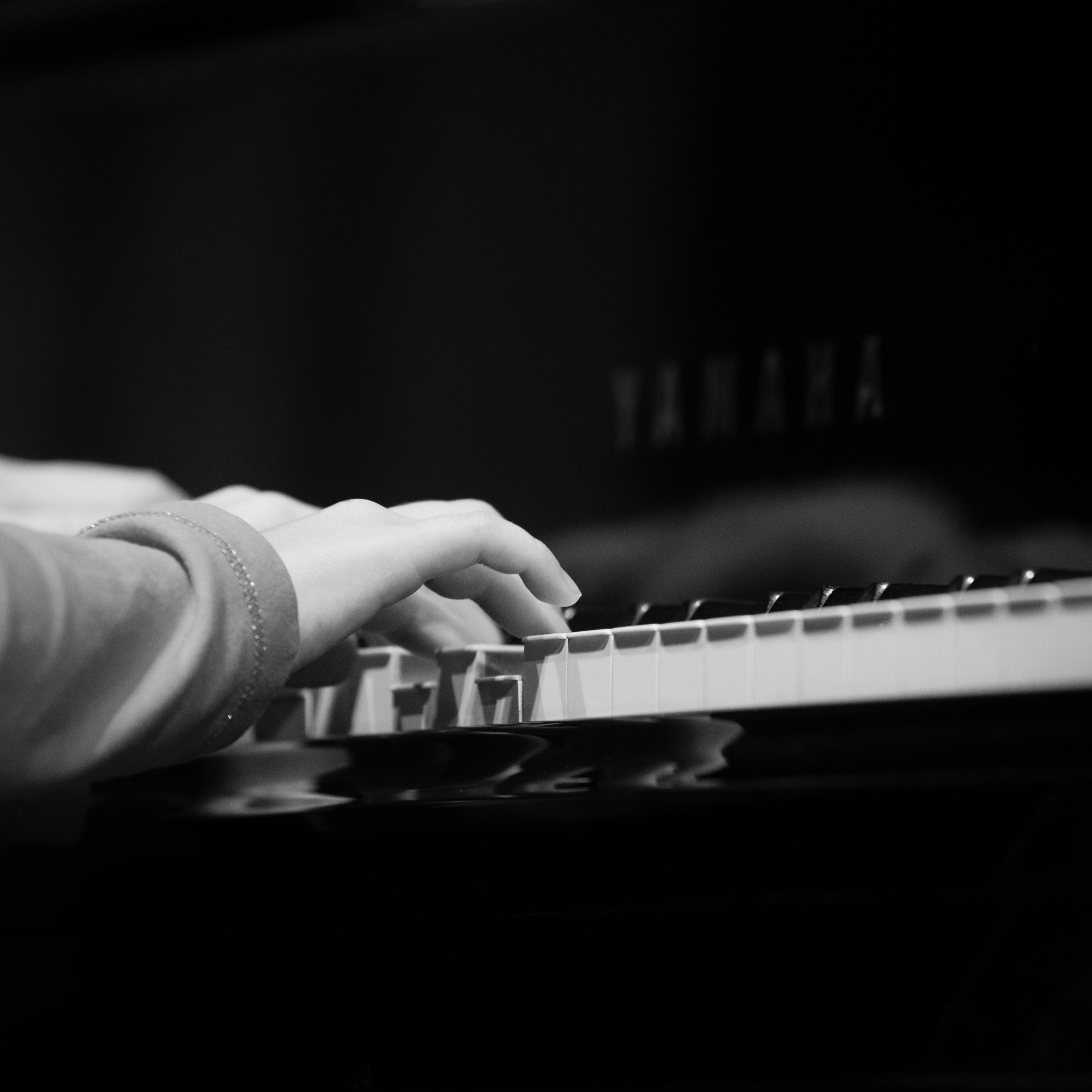fotonemec_gsd_klavirski-10